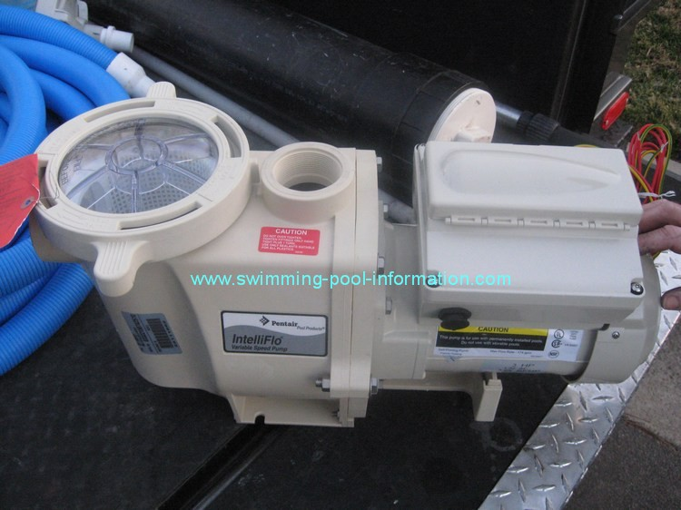 Swimming Pool Pumps And Motors