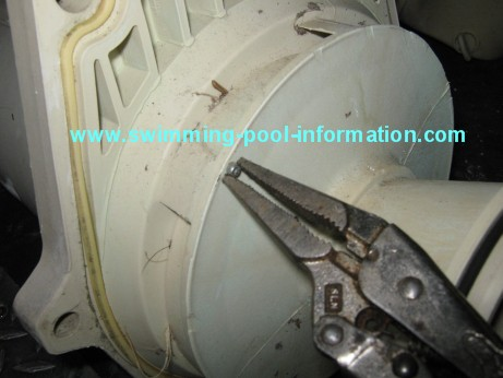 How To Change A Spa Or Pool Pump Seal