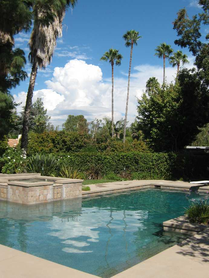 Pictures of swimming pools for Best palm tree for swimming pool